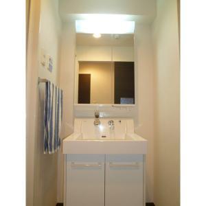 プロシード柏トロワ 部屋写真4 洗面所