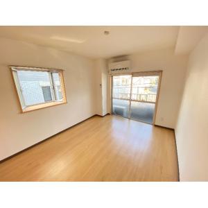 パールグレイスⅡ 部屋写真1 居室・リビング