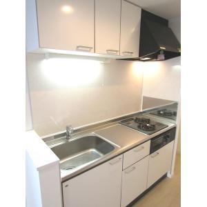 オレリア 部屋写真2 システムキッチン