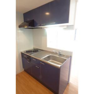フリーゼ 部屋写真2 キッチン