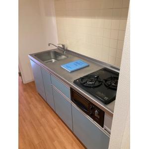 GRAND DUKE 部屋写真2 キッチン