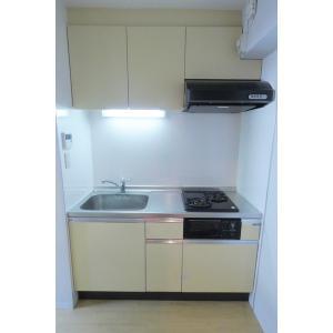レグルス M・S・T 部屋写真2 キッチン
