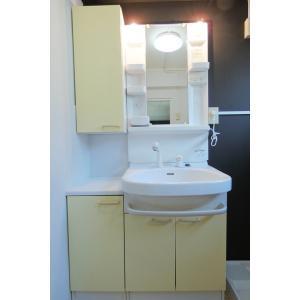 レグルス M・S・T 部屋写真4 洗面所