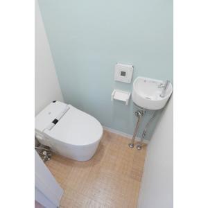 レグルス M・S・T 部屋写真5 トイレ
