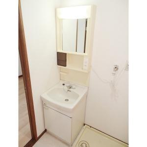 メゾン平林 部屋写真5 洗面所