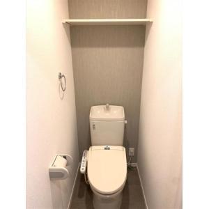 コスミオン 部屋写真5 トイレ