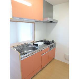 エス・ネクストⅠ 部屋写真2 キッチン
