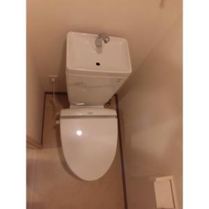 ウェルツK・S 部屋写真4 トイレ