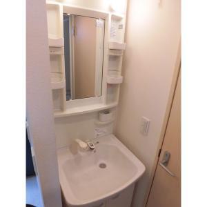ウェルツK・S 部屋写真5 独立洗面台