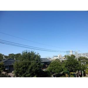 コーポ矢島 物件写真4 眺望