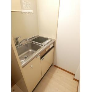 日野ヒルズ 部屋写真2 キッチン