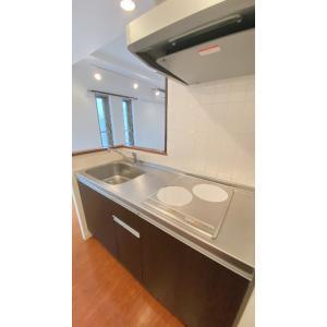 Solid Qualia D'2 部屋写真2 カウンターキッチン