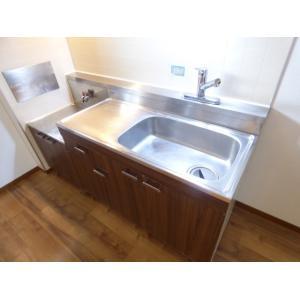 エルハイム 部屋写真4 洗面所