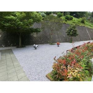イトーピラ向ヶ丘弐番館 物件写真2 エントランス