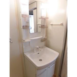 行徳ニューグランドハイツB棟 部屋写真6 洗面所