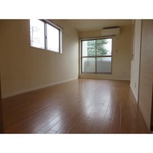 クオーツ 部屋写真1 居室・リビング