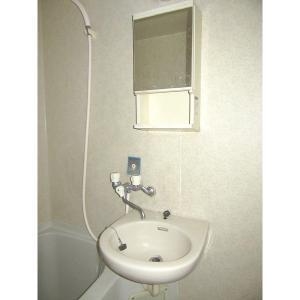 キャメルコートA 部屋写真5 洗面所