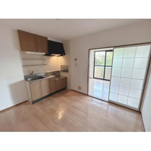 GRANDUO3番館 部屋写真1 居室・リビング