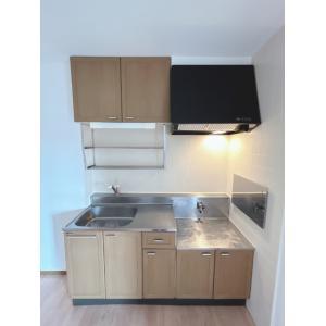 GRANDUO3番館 部屋写真2 キッチン