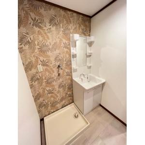 パークサイドⅡ 部屋写真4 洗面所