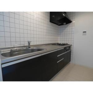 ネクスマイズ 部屋写真2 キッチン