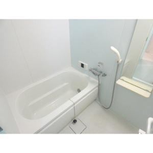ネクスマイズ 部屋写真3 洗面所
