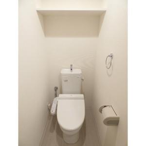 ネクスマイズ 部屋写真5 トイレ