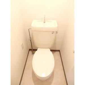 ミナモトパークハイム 部屋写真4 トイレ