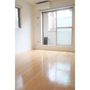 クラインバウム 部屋写真1 居室・リビング