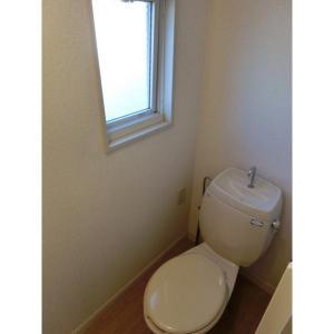 ドミールC 部屋写真4 トイレ
