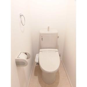 コルニオーロ 部屋写真3 トイレ