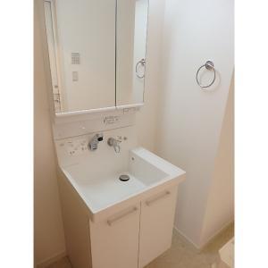 コルニオーロ 部屋写真4 洗面所