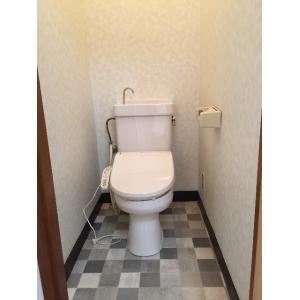 カガミビル 部屋写真4 トイレ