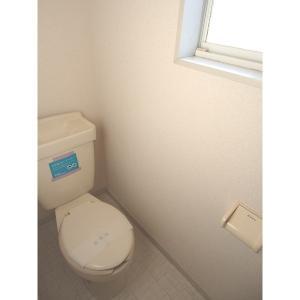 しらこばとⅢ 部屋写真4 トイレ