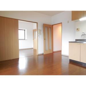 グランシャリオ 部屋写真1 居室・リビング