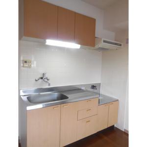 グランシャリオ 部屋写真2 キッチン