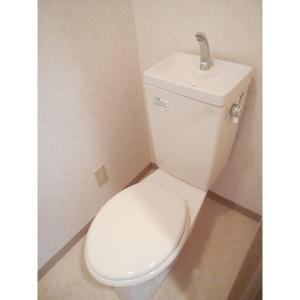 グランシャリオ 部屋写真4 トイレ