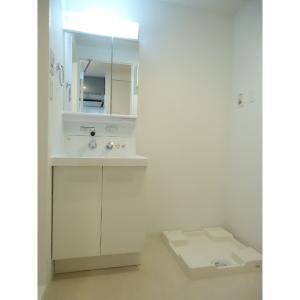 プロシードTX流山セントラルパーク 部屋写真3 洗面所