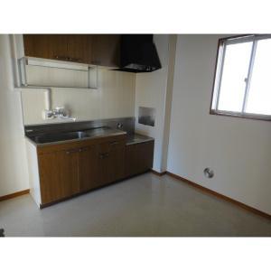 タウンシャイン若葉B 部屋写真3 キッチン