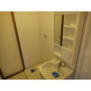 タウンシャイン若葉B 部屋写真5 洗面所