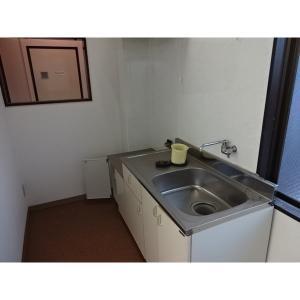 花信ビルⅡ 部屋写真2 居室・リビング