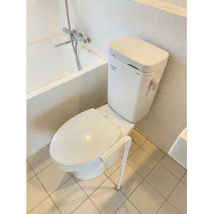 ひだまりコート 部屋写真3 トイレ