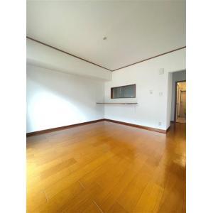 URBAN HILLSA棟 部屋写真1 居室・リビング