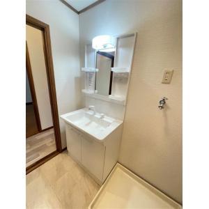 URBAN HILLSA棟 部屋写真5 洗面所
