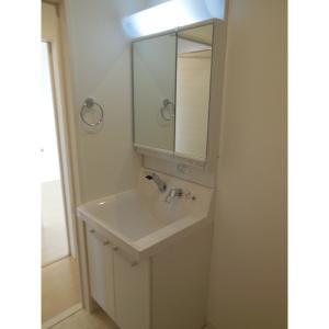ドムス・フェリキウム 部屋写真4 洗面所