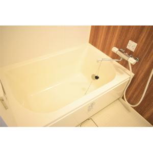 セレーノ東船橋 部屋写真3 トイレ