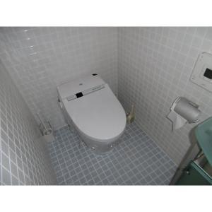 コスモスマーサ(SA精算外) 部屋写真5 トイレ