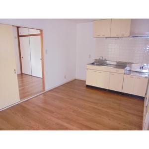 ビライズミ 部屋写真1 居室・リビング