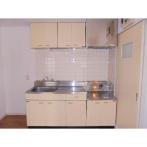 ビライズミ 部屋写真2 キッチン