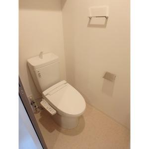 ラ・ルーチェ東大泉 部屋写真5 トイレ